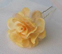 Абрикосовый цветочек