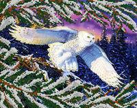 Полярная сова, АКЗ-074  схема-рисунок для вышивки бисером на атласе формат А-3