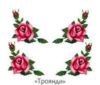 Розы К 205