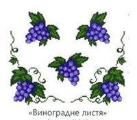 Виноград К 240