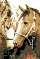 Лошади, ЗК-012 схема-рисунок для вышивания бисером ( нитками DMC) на габардине