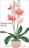 Розовая Орхидея, ЗК-065 схема-рисунок для вышивки бисером на габардине формат А-3