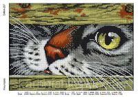 Проныра кот, DANA-257 схема для полного вышивания бисером