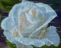 Голубая роза схема для вышивки бисером на ткани А3-45