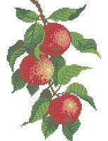 Яблоки схема для вышивки бисером А4-0175