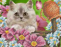 Котенок схема для вышивки бисером на ткани БК-5140