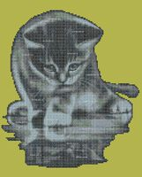 Котик познаватель схема для вышивки бисером на ткани А3-35