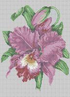 Орхидея схема для вышивки бисером на ткани А3-0187