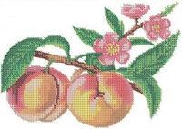 Персики, Д-042 схема-рисунок для частичной вышивки бисером на ткани