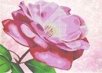 Роза схема для вышивки бисером на ткани Ю-238