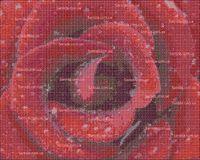 Розовая красота схема для вышивки бисером на ткани А3-43
