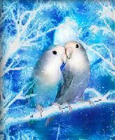 Снежная пара, СГ-2507 рисунок-схема для вышивки бисером №10 на ткани