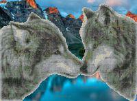 Волчья нежность схема для вышивки бисером на ткани А3-39