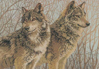 Волчья пара, К-223 схема-рисунок на габардине для вышивки бисером №10, формат А-3