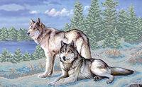 Волки, ЮМА-38 схема - рисунок для вышивки бисером на атласе формат А-3