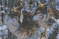 Волки схема для вышивки бисером на ткани А3-22