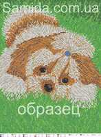 Собака Ши-тцу А3-25 схема с рисунком для полной вышивки бисером на габардине