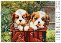 Маленькие щенки,DANA-2113 схема для вышивки бисером на ткани