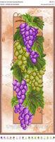 Ароматный виноград, БН-31-А схема-рисунок для полной вышивки бисером на габардине