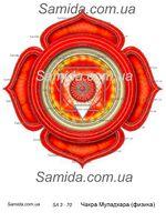 Чакра Муладхара - Физика - схема вышивки бисером SA 3-70