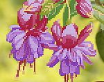 Схема вышивки Цветущая фуксия, арт. ТМ-034