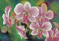 Орхидея заготовка вышивки бисером А4-514