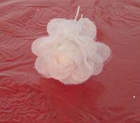 Белый цветочек