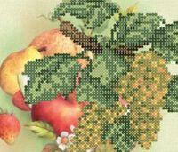 Виноград, СД-031 схема с рисунком для частичной вышивки бисером №10 на ткани
