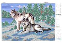 Волки, ЮМА-459 схема - рисунок для вышивки бисером на ткани